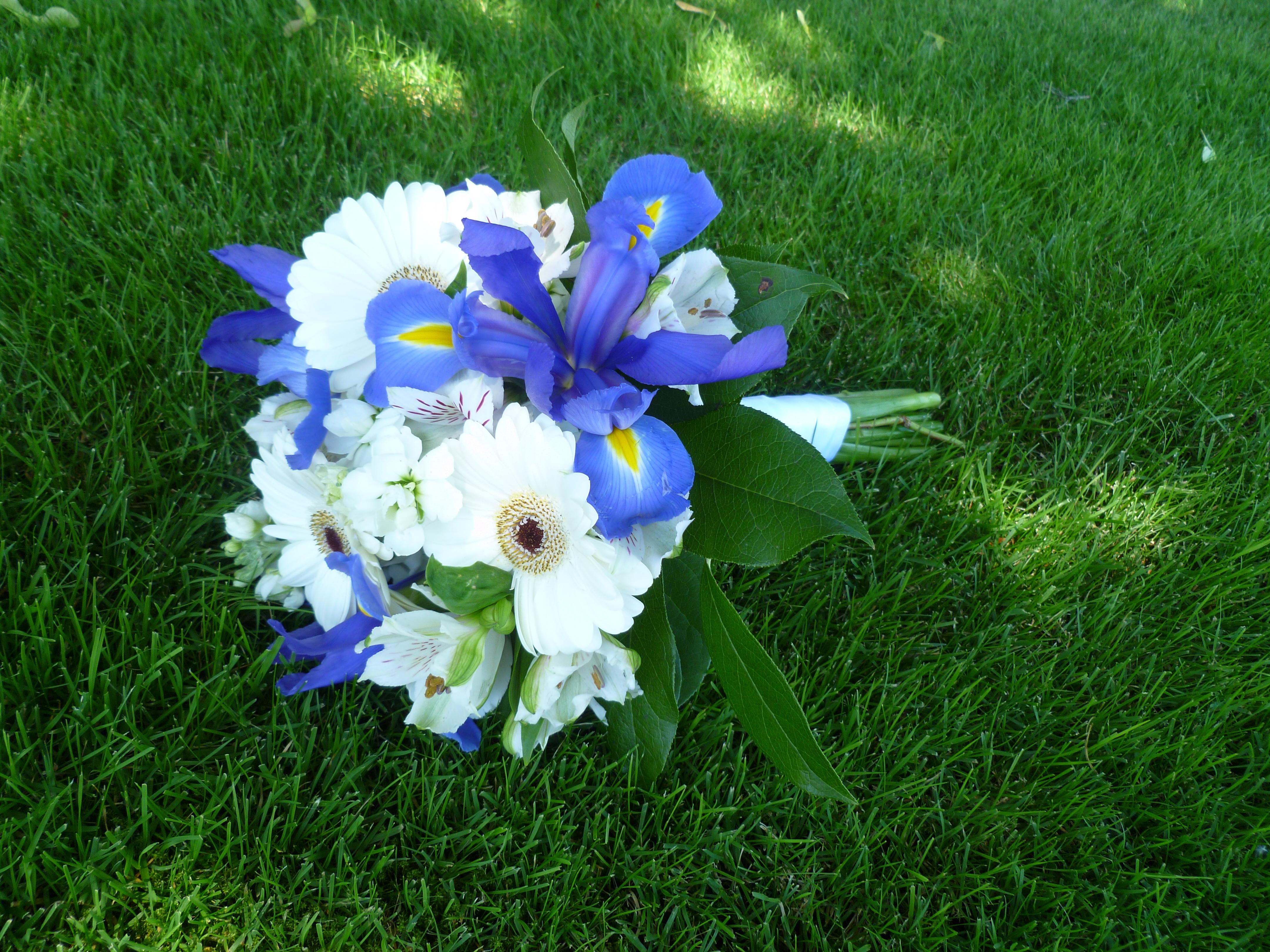 Image Result For Blue Wedding Flowers