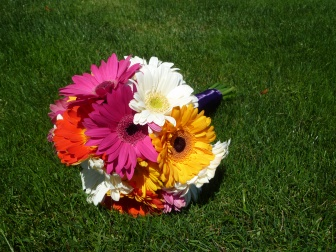 Multi Colored Gerbera Daisey wedding bouquet