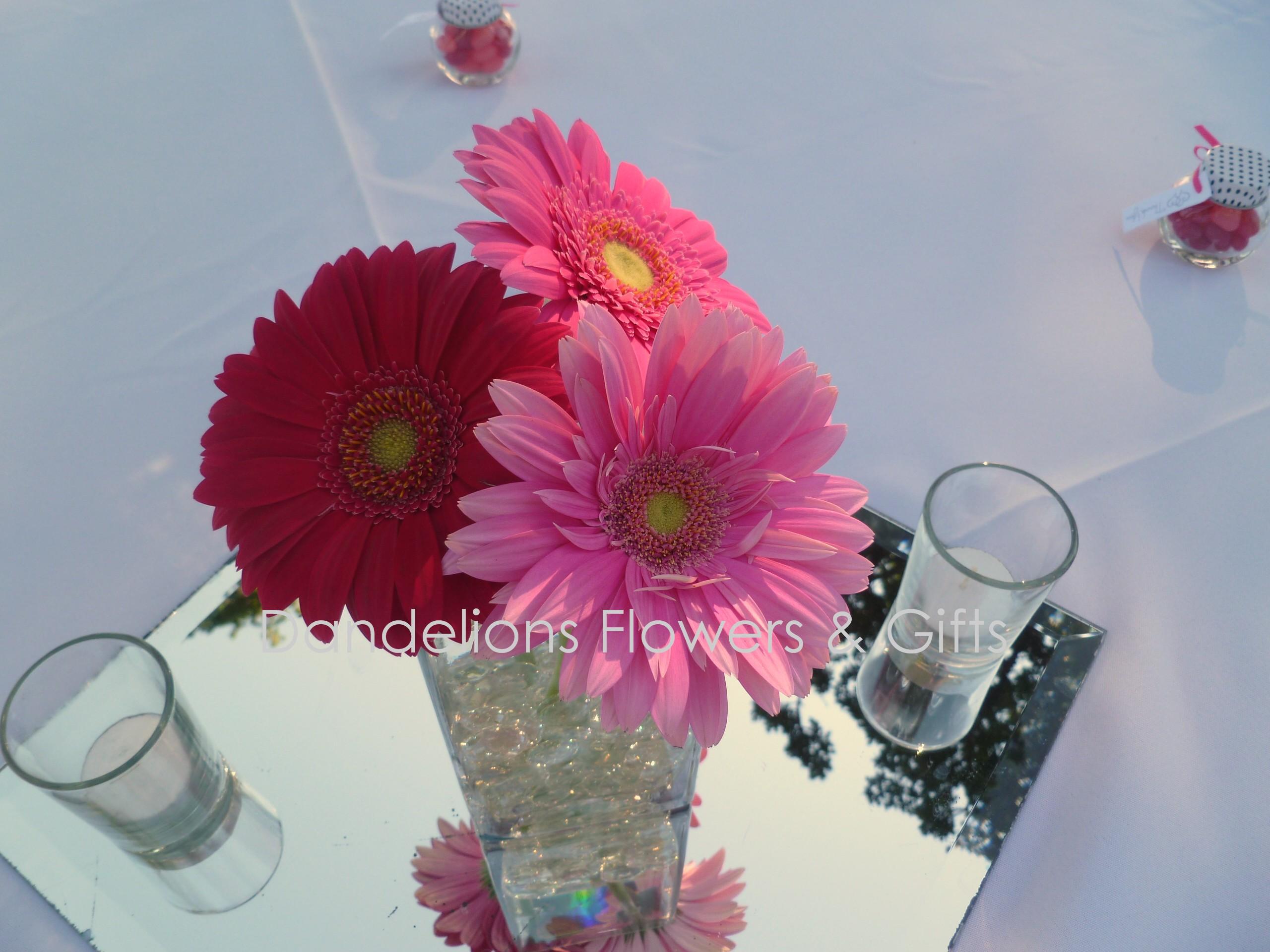 Gerbera daisies dandelions flowers gifts