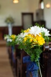Daisy pew flowers