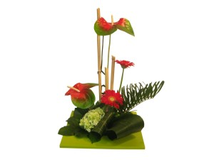 modern flowers eugene