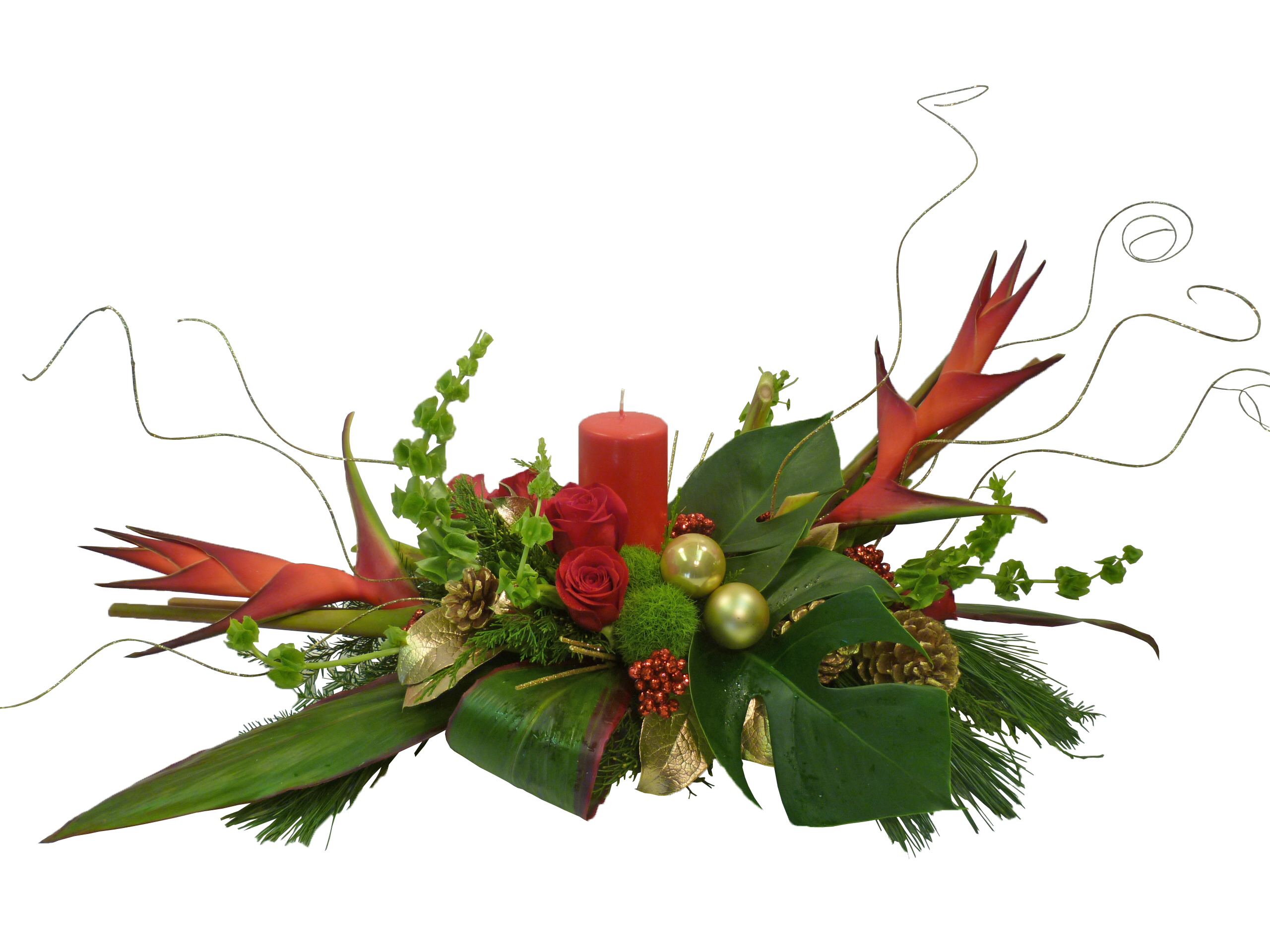 Christmas flowers dandelions flowers gifts modern christmas centerpiece with tropical flowers floridaeventfo Choice Image