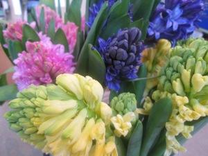Tulips Dandelions Flowers Gifts