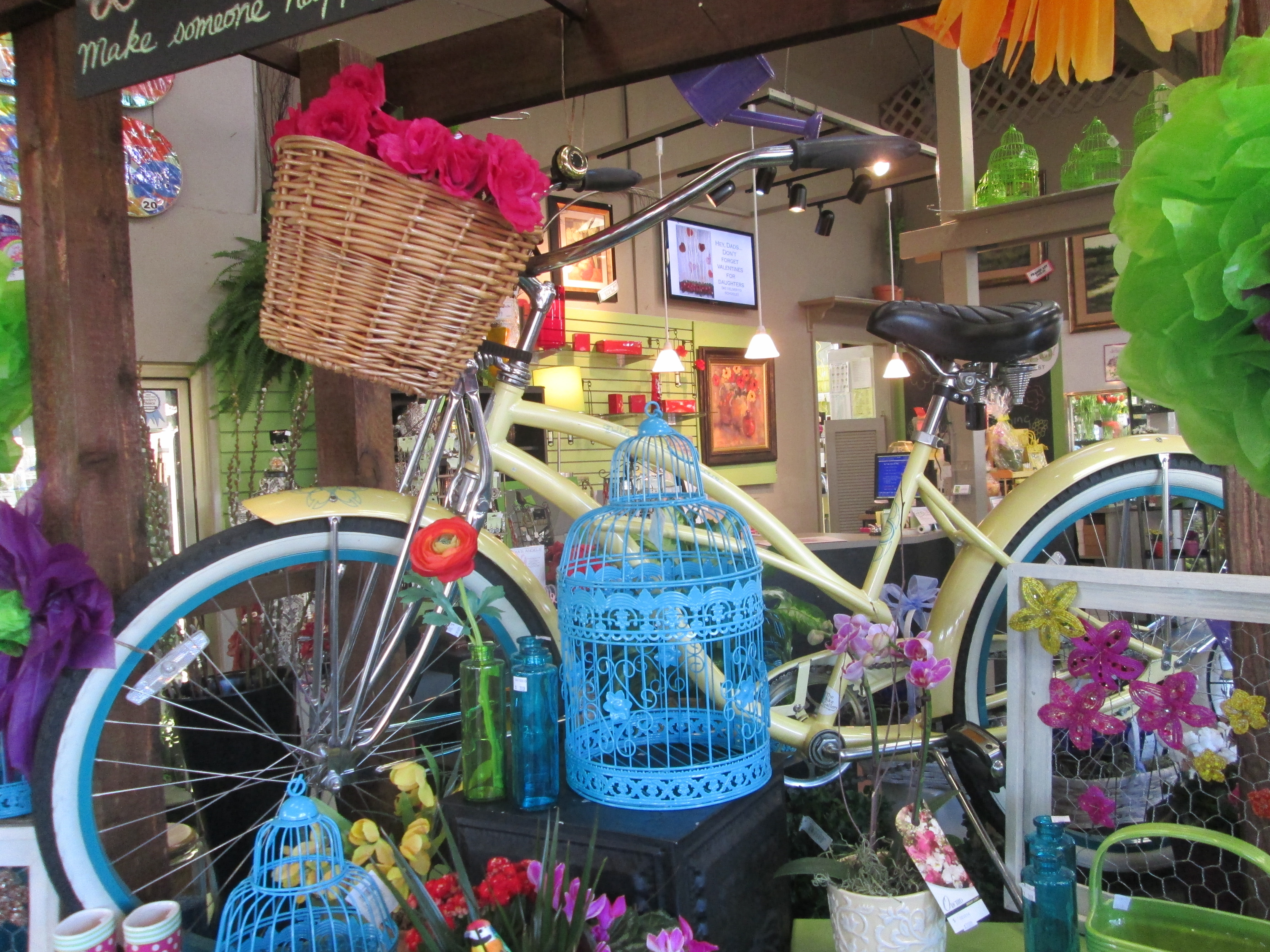 Cruiser Bikes Eugene Oregon local florist eugene or