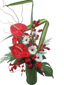 tropical christmas flowers