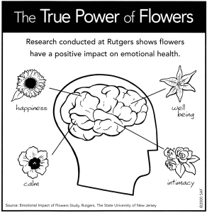 flower research